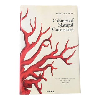 'Cabinet of Natural Curiosities' Coffee Table Book