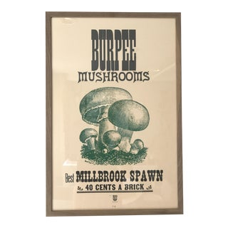 Vintage Silk Screen Veritable Mushrooms Poster