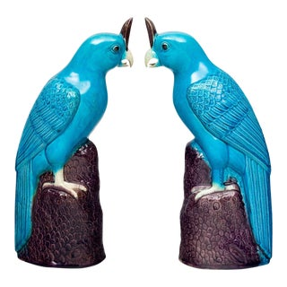 Pair Chinese Turquoise Cockatoos