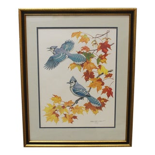 Blue Jay Lithograph by Albert Earl Gilbert