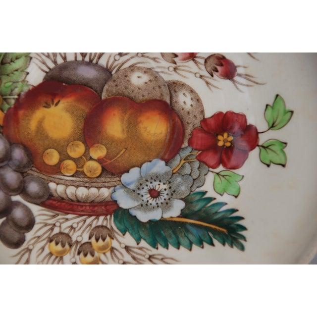 Vintage Spode Reynolds Pattern Saucer - Image 3 of 8