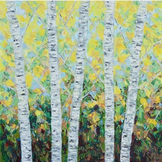Dancing Paper Birch by Ann Marie Coolick