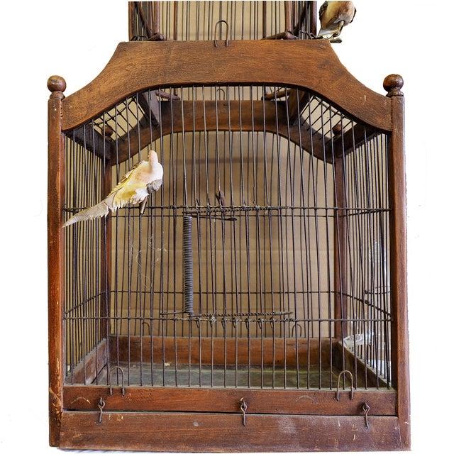 Antique 19th Century Victorian Cupola Bird Cage - Image 2 of 7