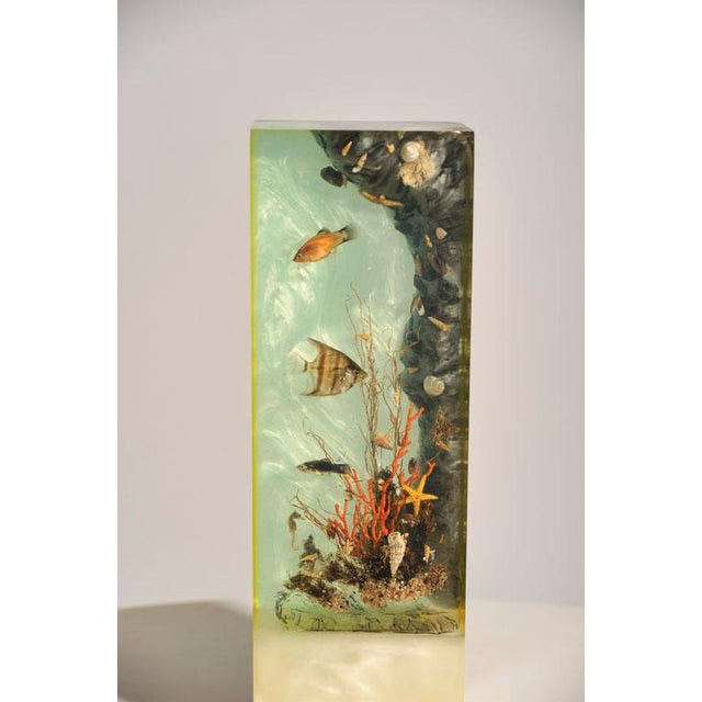 "Italian Lucite Lighted ""Under-the-Sea"" Aquarium Sculpture - Image 6 of 7"
