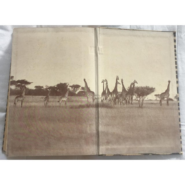 1940 I Married Adventure, Zebra Bound Display Book - Image 6 of 10