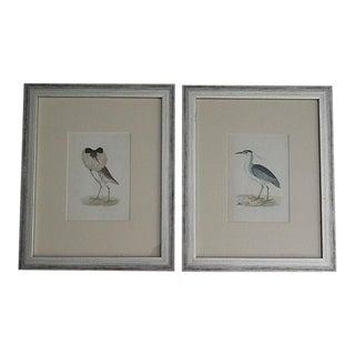 Antique Hand Colored Birds Engravings, Set of 2, Rev Morris