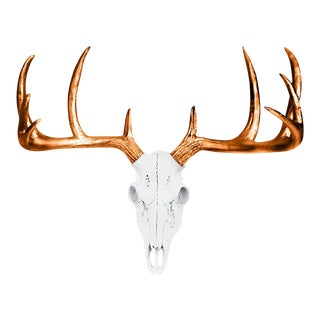 Wall Charmers White & Bronze Faux Taxidermy Mini Deer Skull Wall Mount