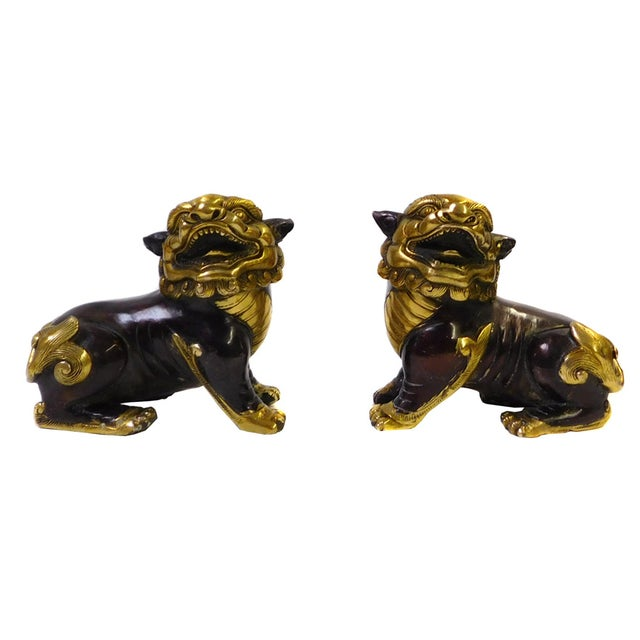 Image of Chinese Bronze Golden Fengshui Foo Dogs - Pair