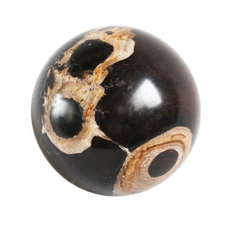 Petrified & Fossilized Wood Sphere