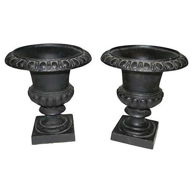 19th Century Cast Iron Campania Urns - A Pair - Image 1 of 4