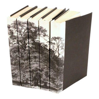 Image Collection Black & White Tree Books - Set of 5