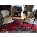 Image of French Fauteuil Chairs - Pair