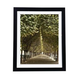 Framed Original Photograph: Paris Park