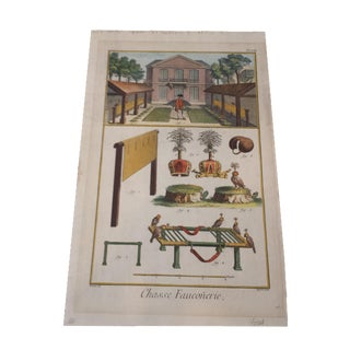 Antique Diderot French Hand-Colored Engraving