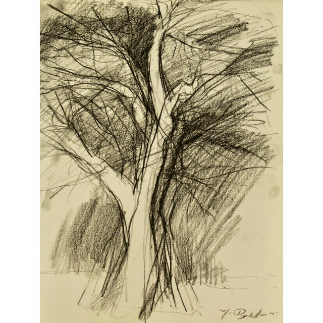 """""""Tree in Winter"""" Drawing - Image 1 of 3"""