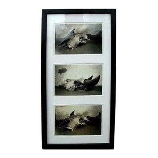 1940s Framed Gelatin Prints