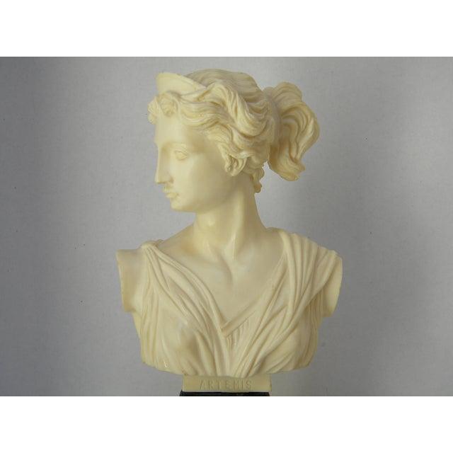 Vintage Classic Greek Goddess Bust - Image 2 of 6