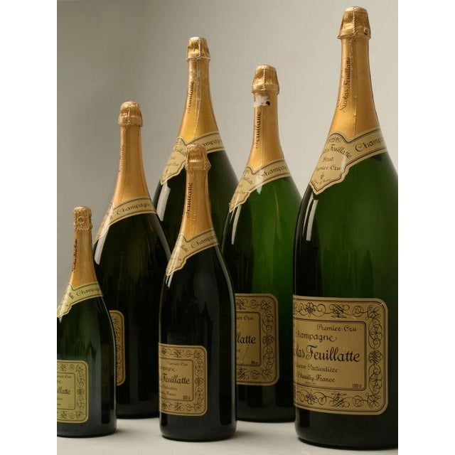 Set of 6 Nicolas Feuillatte Champagne Bottle Store Props - Image 10 of 10