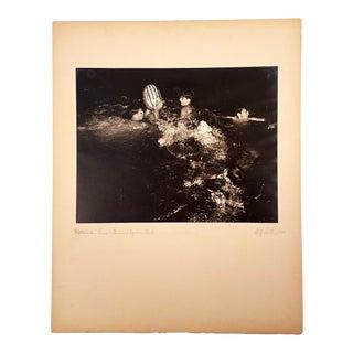 """1940 Fritz Roetter """"Watermelon Race - Armour Square Park"""" Photo"""