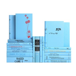 Mid Century Sky Blue Mixed Books - Set of 20