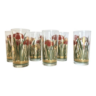 Culver Iris Cinnabar Glasses - Set of 6