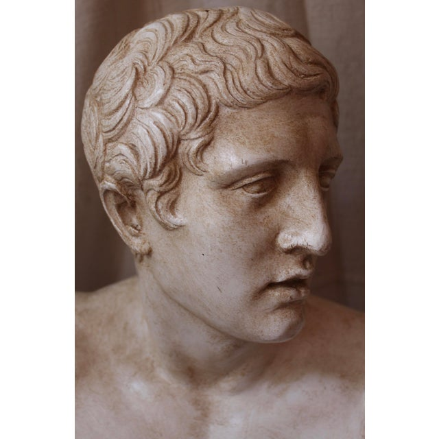 Vintage Bust of a Roman Athlete - Image 4 of 8