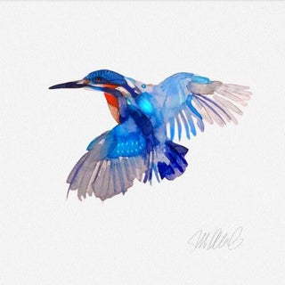 Kingfisher Watercolor Print