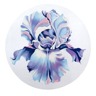 'Iris on Silver' Serigraph