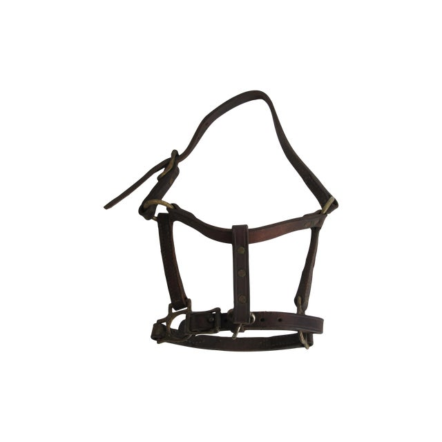 British Leather & Brass Pony Halter - Image 1 of 6
