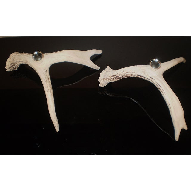 Image of Alaskan Sitka Deerhorn Candlesticks