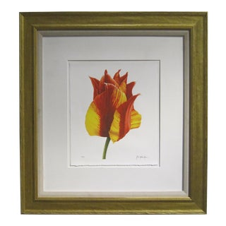 Vintage Sarreid LTD John Matthew Moore Tulip Painting