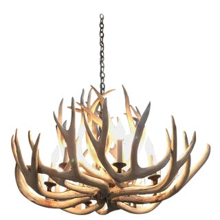 Antique Bleached Antler Chandelier