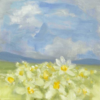 Daisy Field Oil Painting
