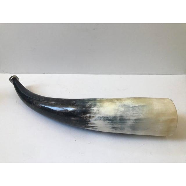 Decorative Polished Horn - Image 2 of 8
