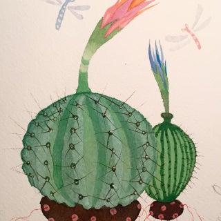 Cactus Circle by Steven Klinkel