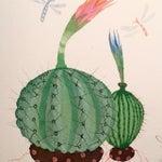 Image of Cactus Circle by Steven Klinkel