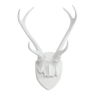 Wall Charmers Antler Mount Necklace Rack
