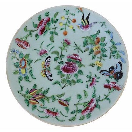 Chinese Celadon Famille Rose Wall Plate - Image 1 of 2