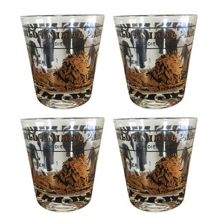 San Diego Animal Park Drinking Glasses - Set of 4