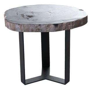 Black Petrified Wood Side Table I