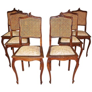 Belgian Carved Oak Dining Chairs - Set of 6