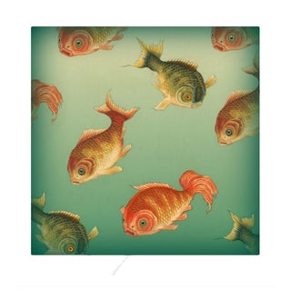 Vintage 'Many Fish' Archival Print
