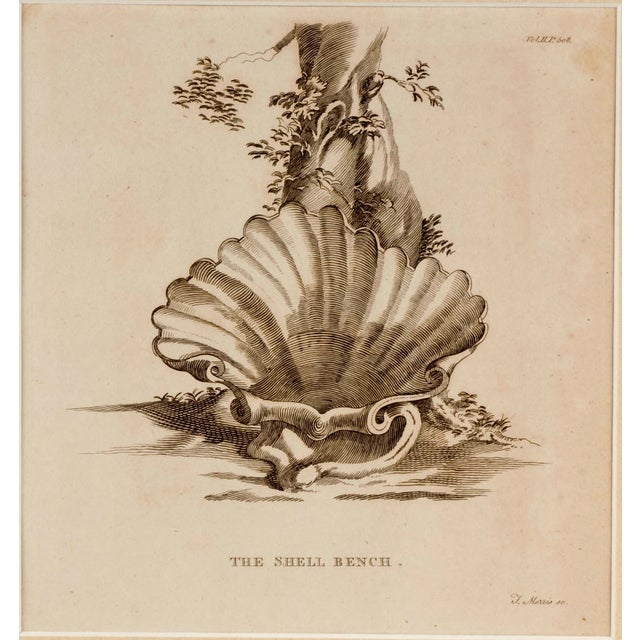 Original Engraving Strawberry Hill Shell Bench - Image 3 of 3