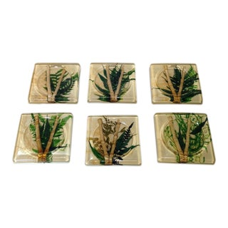 Vintage Lucite Bamboo & Fern Coasters - Set of 6
