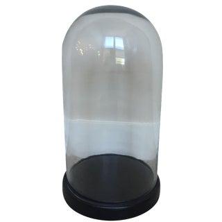 Glass Display Dome on Base