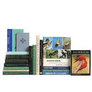Birds of North America - Set of 18