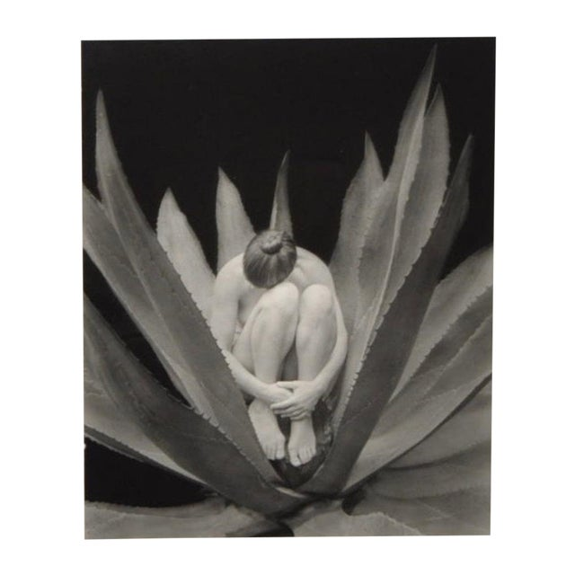 Image of Kim Weston Black and White Photograph c.2001