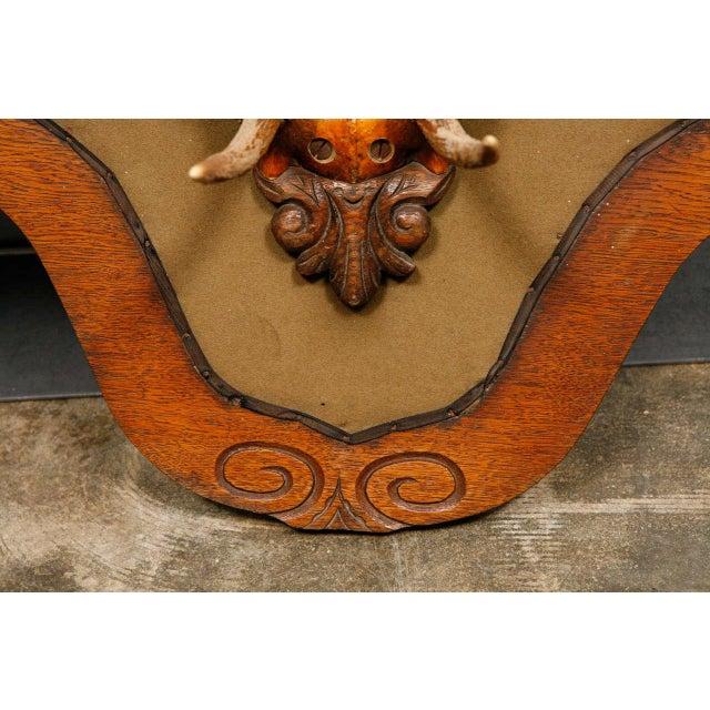 Victorian Carved Oak and Antler Coat/Hat Rack - Image 8 of 8