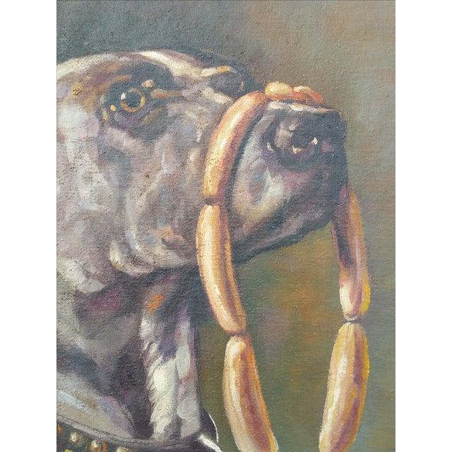 Image of Neopolitan Mastiff 'Waiting for Permission'