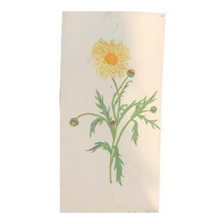 Original Vintage French Watercolor Floral Botanical Design Study